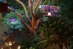 22-Les-lumières-de-la-nuit-de-Yiri-Suma